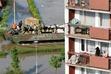 floods_poland_breslau3