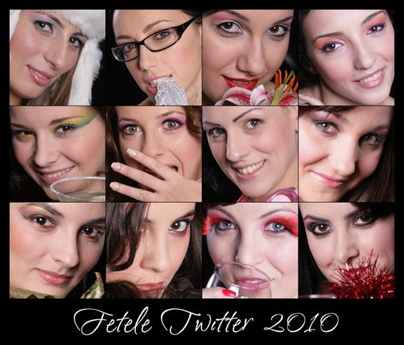 fetele-twitter-2010