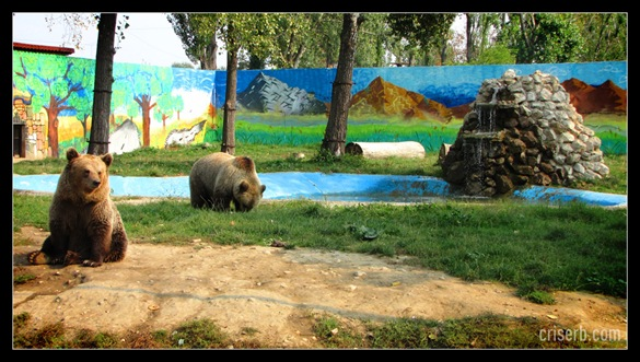 zoo_targoviste_21