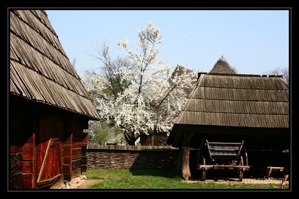 muzeul-satului-14