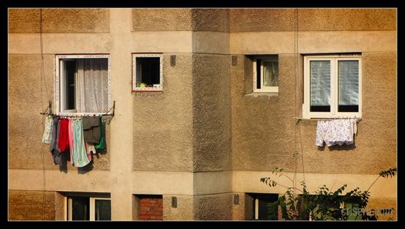 haine-pe-geam