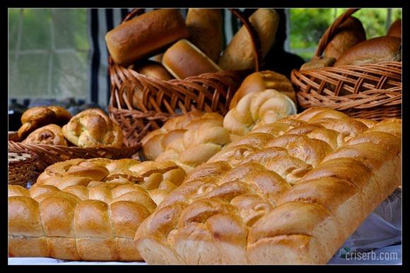 targul-de-paine07