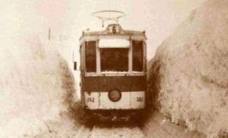 iarna1954